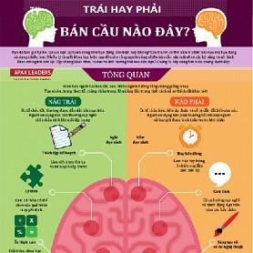 Tư duy của não trái và não phải